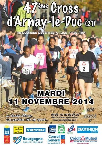 ob_8ca130_2014-11-11-cross-d-arnay-affiche.JPG
