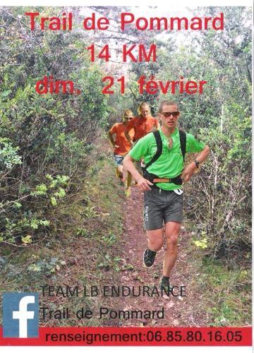 trail de Pommard 2016.jpg